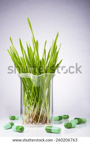 Pharmaceutical research. Herbal pills and medical plants in laboratory glass - stock photo