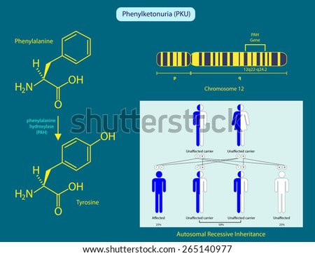 Phenylketonuria - stock photo