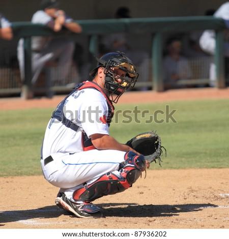 PHOENIX, AZ - OCTOBER 19: Yan Gomes, a Toronto Blue Jays prospect from Triple-A, catches for the Phoenix Desert Dogs in the Arizona Fall League Oct. 19, 2011 at Phoenix Municipal Stadium, Phoenix, AZ. - stock photo