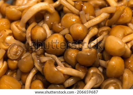 Pholiota nameko mashrooms - stock photo