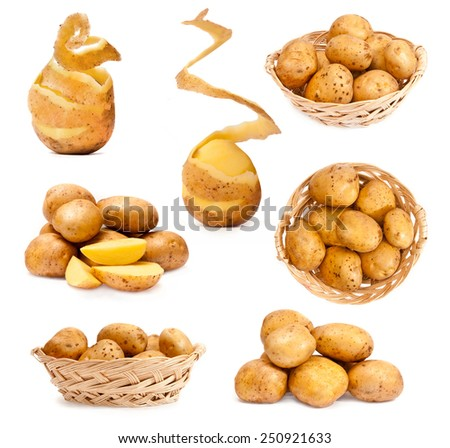 photo collage of potatoes isolated on white background - stock photo