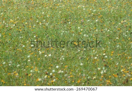 Photo impression of meadow in spring, New England - stock photo