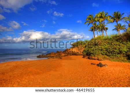 photo of a beautiful tropical beach - stock photo