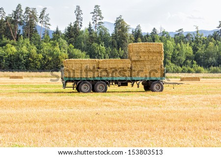 Photo of a hay cart on a field with hay on it - stock photo