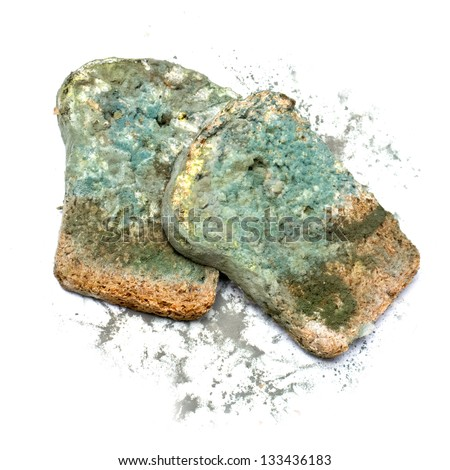 Photo of a piece of the gray bread, covered a mold (on a white background) - stock photo