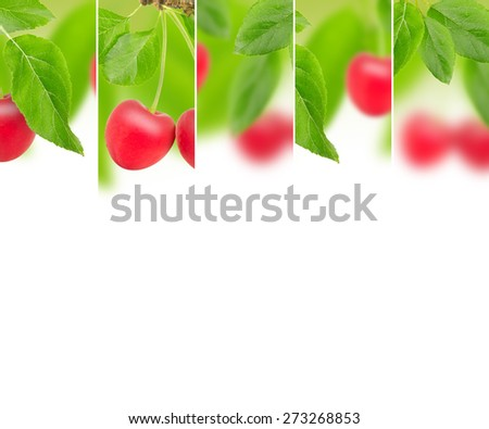 Photo of abstract cherry mix with white space for text - stock photo