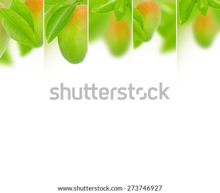 Photo of abstract mango mix with white space for text - stock photo