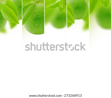 Photo of abstract maracuja mix with white space for text - stock photo