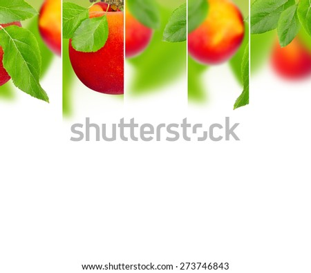 Photo of abstract peach mix with white space for text - stock photo