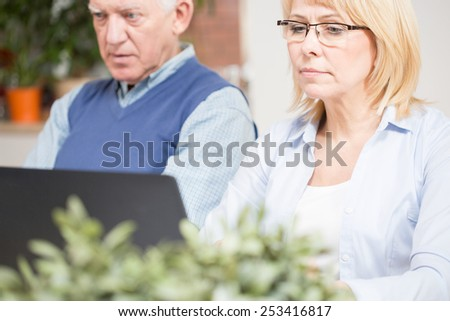 Photo of aged business couple working at office - stock photo