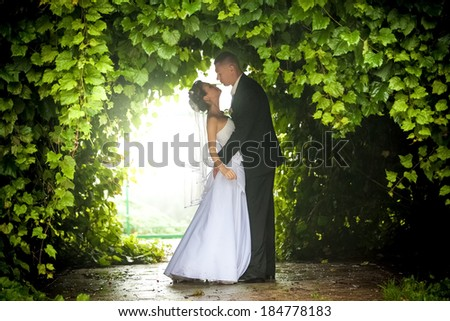Photo of bride and groom hugging under trees - stock photo