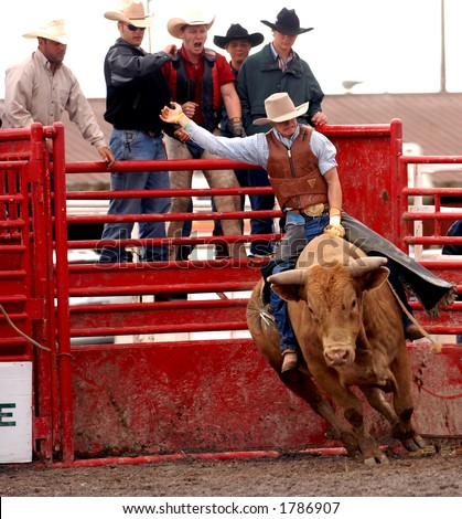 Photo of bullrider at the Help A Child Smile Rodeo Sept. 3/2006 in Welland, Ontario, Canada. - stock photo