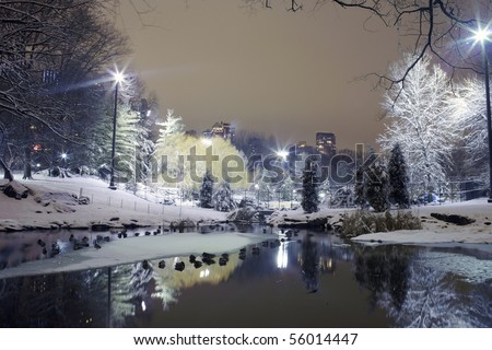Photo of Central Park in New York City at night.  Taken December 19, 2008 in the USA.  This image was taken by the 59th street pond on the south end of the park. - stock photo