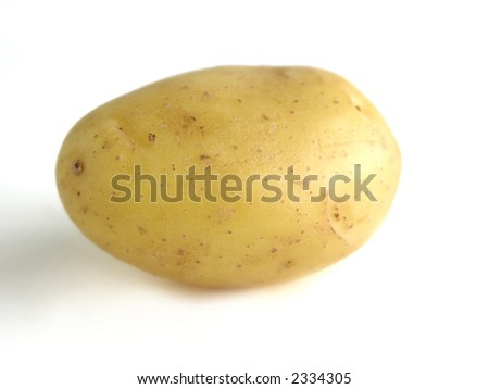 Photo of clean, natural patato - stock photo