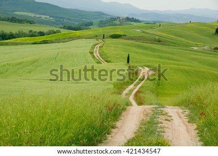 Photo of field with fresh green grass with road and cloudy sky - stock photo
