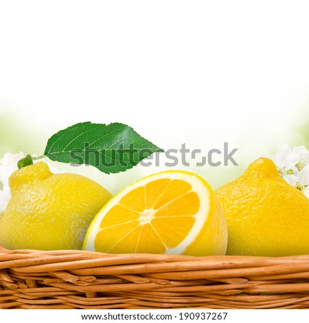 Photo of lemon in basket with blossom background - stock photo