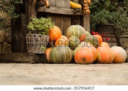 Photo of many whole big fresh ripe orange pumpkins stacked on autumn day harvest time farm yard on countrified background, horizontal picture - stock photo