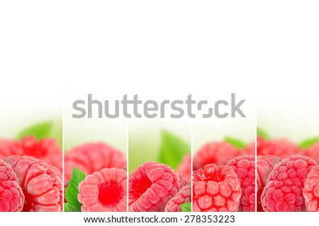 Photo of raspberry mix with white space - stock photo