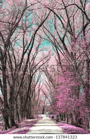 Photo of summer landscape shot in the IR spectrum - stock photo