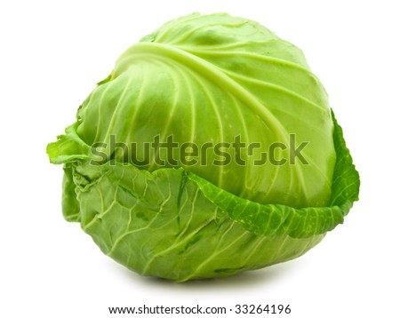 Photo of the single green cabbage against the white background - stock photo