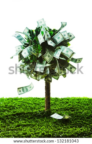 photo of tree made of dollars isolated on white - stock photo