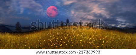 Photo with night lighting. Beauty panorama of mountain meadows in Transcarpathia - is the abundance of vegetation on the background of beautiful tops and interesting weather conditions - stock photo