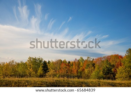 Photograph of a brilliant autumn landscape with beautiful colors and an impressive sky. - stock photo