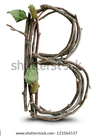 Photograph of Natural Twig and Stick Letter B - stock photo