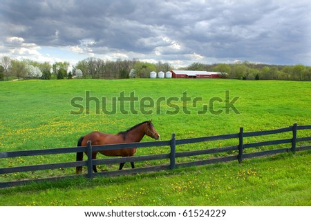 Photograph of the brilliant green of a spring pasture, with a horse at the fence and the stables in the back.  Beautiful sky enhances the green of the pasture. - stock photo