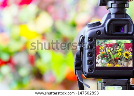Photographic works, photograph - stock photo