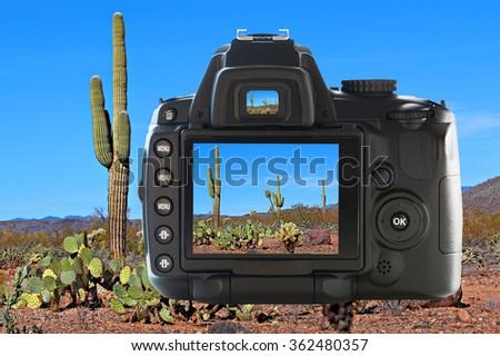 Photography in the Arizona desert  - stock photo