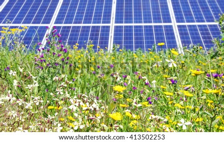 Photovoltaic panels and wild flowers  - stock photo