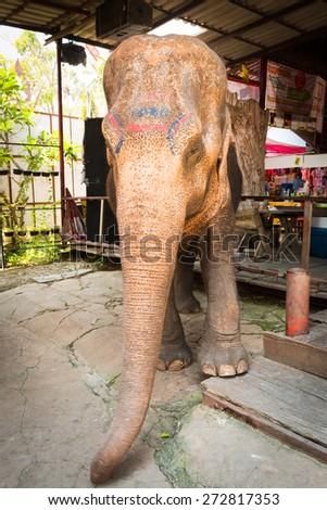 Phra Nakhon Si Ayutthaya, Thailand - April 14, 2015: Ayothaya Floating Market. Has a many visitors, both Thais and foreign visitors with varieties of Thai clothes and Thai food at Ayutthaya,Thailand - stock photo