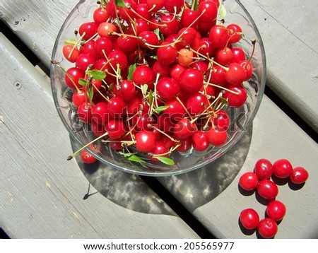 Picked cherries in a bowl - stock photo