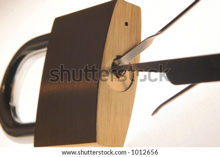 Lock Pick Stock Photos Images Amp Pictures Shutterstock