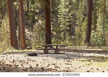 Picnic area and Ponderosa pine trees forest area Bend Oregon region. - stock photo