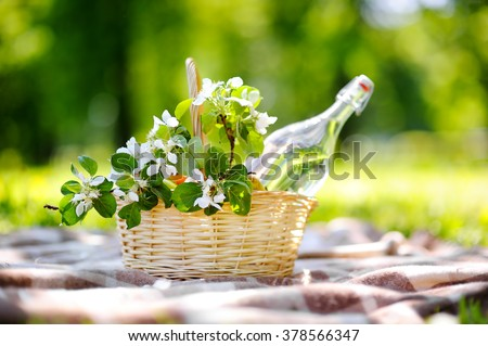 Picnic basket with fruits, flowers and water in the glass bottle  - stock photo