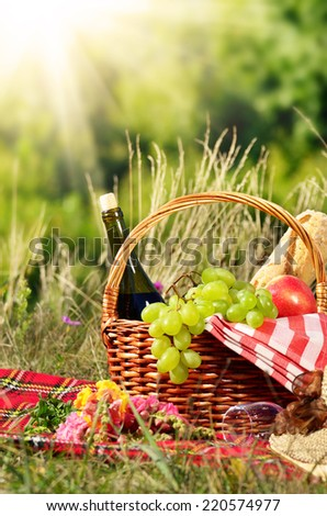 Picnic basket with hat and book. Holiday vacation concept - stock photo