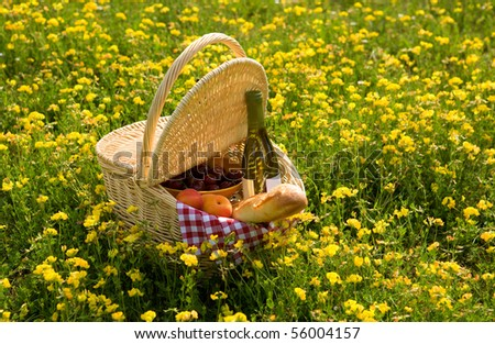 Picnic basket with wine, bread and fruits outdoors in yellow flowers - stock photo