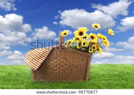 Picnic basket with woven and sunflowers, shot on the green grass  at in spring or summer - stock photo