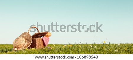 Picnic on Meadow,Copy space for your text. - stock photo