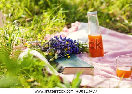 picnic on the grass. juice, a bouquet of wild flowers, fruit, book - stock photo