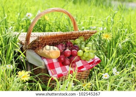 picnic setting on green grass. - stock photo