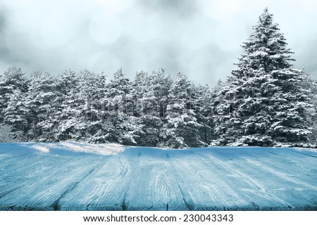 Picnic table in winter forest in snow - stock photo