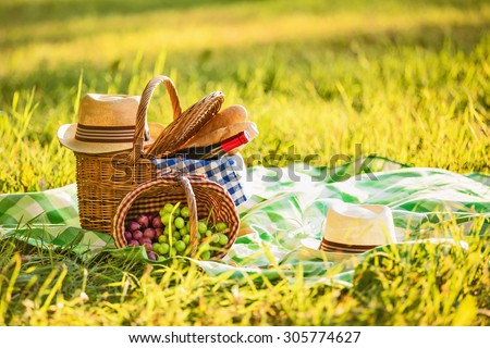 Picnic with wine and grapes in nature - stock photo