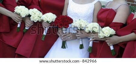 Picture of a row of bridesmaids and bride with their bouquets - stock photo