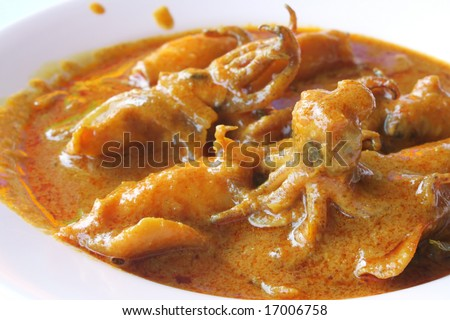 picture of a typical indian squid curry - stock photo