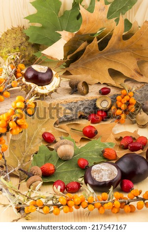 Picture of autumn with brown acorns,  chestnuts, rosehip, seabuckthorn, autumn leaves, on wooden background - stock photo
