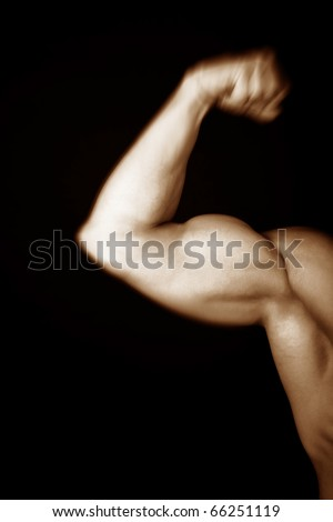 Picture of males arm showing muscles - stock photo