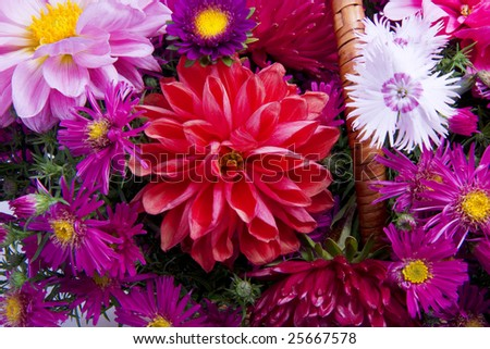 Picture of the basket of flowers - stock photo